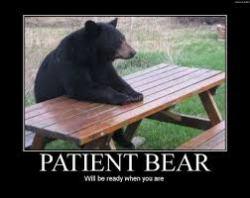 bearb